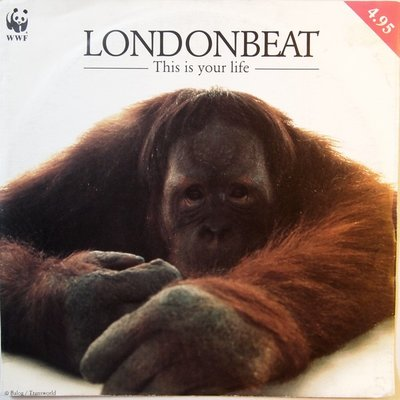 Londonbeat - This is your life - Single