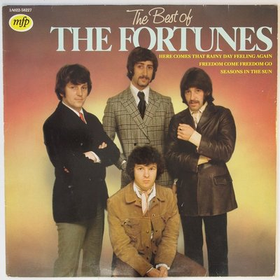 Fortunes, The - The best of - LP